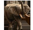 Elefante ##STADE## - manto 16022