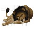 Leone ##STADE## - manto 16019