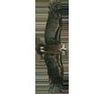 Avvoltoio monaco ##STADE## - manto 51